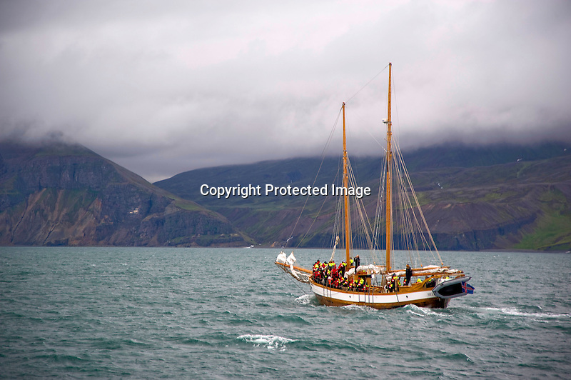 Hildur Sailing Boat on Whale Watch in Skjalfandi Bay in Husavik in North Iceland