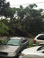 Damage from Hurricane Irma bands in South Miami, FL Sunday Sept 10, 2017.