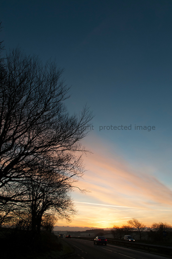 Sunset and silhouette trees