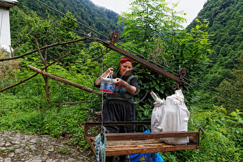 A beekeeper puts the containers on a traditionally-made cable car. On the abrupt slopes of the valley, the houses on the heights are connected to the route by cable cars for transporting honey and the tea harvest. ///Une apicultrice installe les bidons de miel sur un téléphérique artisanal. Sur les pentes abruptes de la vallée, les maisons sur les hauteurs sont reliées à la route par des téléphériques pour transporter miel, et les récoltes de thé. <br /> <br /> World's Most Expensive Honey 59/71<br /> On the Anzer Plateau, the apiaries are protected from the Eurasian brown bear (Ursus arctos arctos) by an electric fence. The bear population in Turkey is estimated to be between 3000 and 5000.<br /> Sur le plateau d'Anzer, les ruchers sont protégés des ours brun d'Eurasie (Ursus arctos arctos) avec une clôture électrique. La population des ours est estimée de 3000 à 5000 en Turquie.
