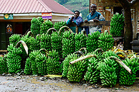 UGANDA, Kasese, street sale of banana in village along the road
