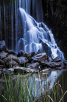 Waterfall and reflection at an urban park.  Don Castro Regional Recreation Area in Hayward, California.