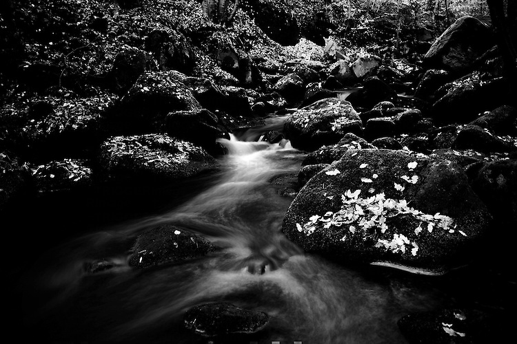Stream flows through wooded valley in Calderdale, Yorkshire, UK, Long Exposure