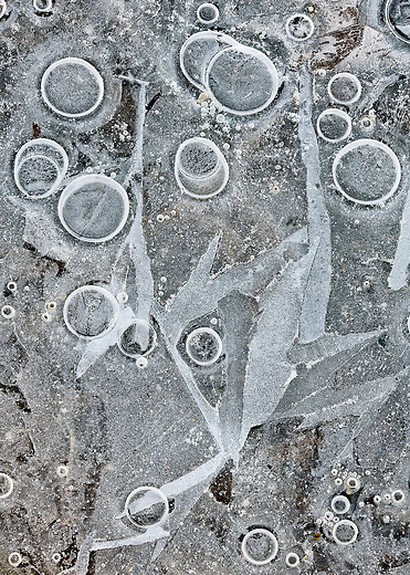 Bubbles in ice create an interesting abstract.