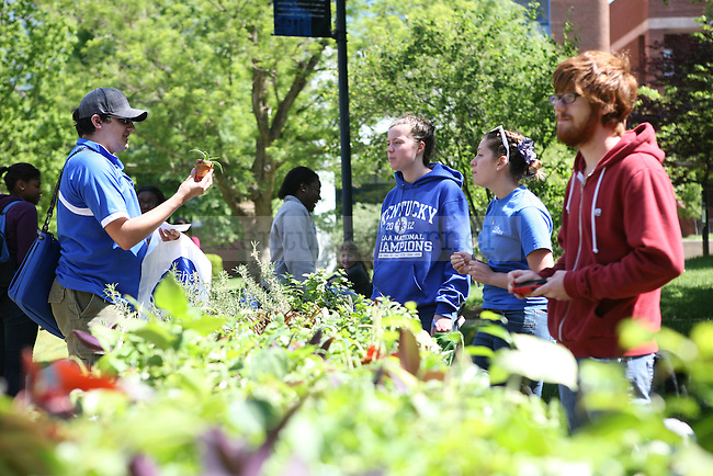 Natural resource and environmental science junior Anna Muncy, horticulture sophomore Alexis Amorese, and horticulture science senior Patrick Mooney sell plants at Agriculture Awareness Day near Memorial Hall on 4/18/12 in Lexington, Ky. Photo by Tessa Lighty | Staff