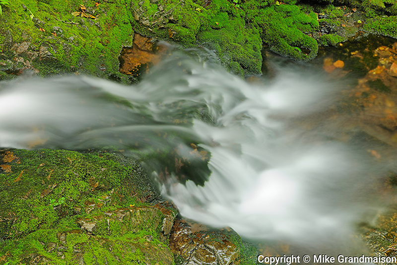 Dickson Creek at Dickson Falls <br /> Fundy Natinoal Park <br /> New Brunswick<br /> Canada