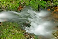 Dickson Creek at Dickson Falls <br /> Fundy Natinoal Park <br /> New Brunswick<br /> Canada