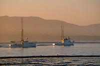 Salmon trollers<br /> Bodega Bay<br /> Sonoma County<br /> California