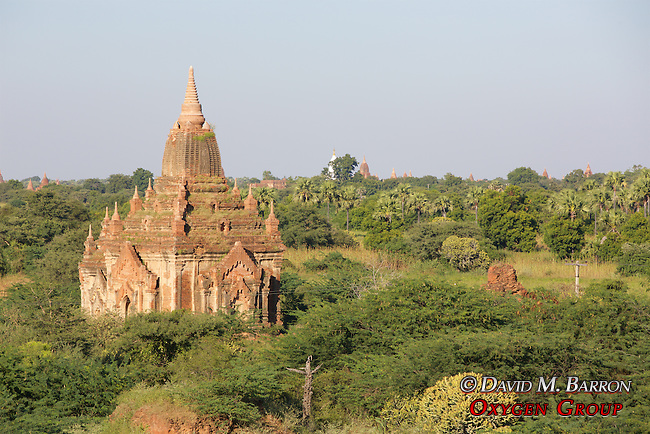 View From Bagan Temple