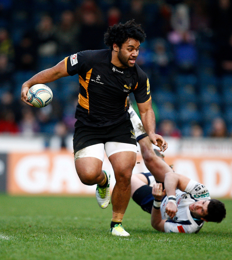 Photo: Richard Lane/Richard Lane Photography. London Wasps v Rugby Mogliano. Amlin Challenge Cup. 12/01/2013. Wasps' Billy Vunipola attacks.