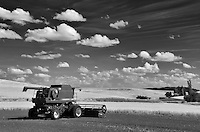 Combine harvester in newlt plowed field with wheat fields. The Palouse, Washington