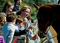 LEXINGTON, KENTUCKY - APRIL 07: Young fans pet an outrider's horse between races on opening day at Keeneland Race Course on April 7, 2017 in Lexington, Kentucky. (Photo by Scott Serio/Eclipse Sportswire/Getty Images)
