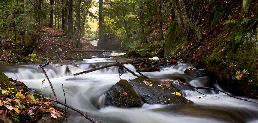 A river flows through a forest during the autumn season. Upper Peninsula of Michigan.