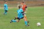 AYSO tournament 2010-U12