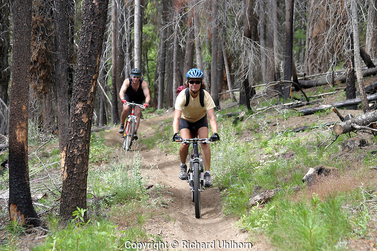 Serious mountain bikers love to ride on singletrack trails wherever they can find it. The Tommy Creek trail is located in the Entiat River drainage in eastern Washington State.