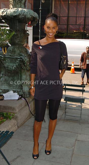 WWW.ACEPIXS.COM . . . . .  ....September 6 2007, New York City....Actor Joy Bryant arriving at Mercedes-Benz New York Fashion Week in Bryant Park in Manhattan.....Please byline: AJ Sokalner - ACEPIXS.COM.... *** ***..Ace Pictures, Inc:  ..(212) 243-8787 or (646) 769 0430..e-mail: picturedesk@acepixs.com..web: http://www.acepixs.com