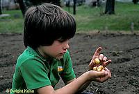 HS16-008z  Onion - boy planting onion bulbs in garden