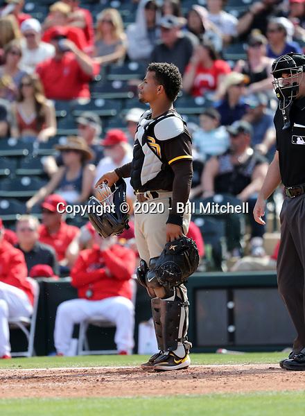 Francisco Mejia - San Diego Padres 2020 spring training (Bill Mitchell)