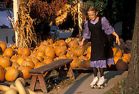 AJ2217, Amish, pumpkins, Pennsylvania, Lancaster County, Intercourse, A Amish girl wearing a purple dress with a black apron rollerskates in front of a pumpkin pile in the fall in Lancaster County.