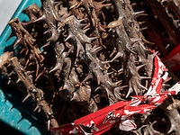 Medizinmarkt in Daegu, Provinz,Gyeongsangbuk-do , S&uuml;dkorea, Asien<br /> medicine market  in Daegu,  province Gyeongsangbuk-do, South Korea, Asia