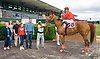 Geebop winning at Delaware Park on 6/7/17
