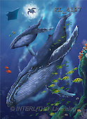 Interlitho, Lorenzo, REALISTIC ANIMALS, paintings, whales, tortoise(KL4197,#A#) realistische Tiere, realista, illustrations, pinturas ,puzzles