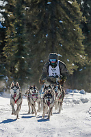 James Castro drives a 6 dog team in the 2009 Limited North American sprint sled dog race, Fairbanks, Alaska.