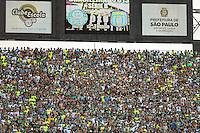 SAO PAULO, SP, 26.10.2013 - CAMP.  BRASILEIRO B - PALMEIRAS X SAO CAETANO - Torcedores do Palmeiras durante  partida contra o Sao Caetano, válida pela 32ª rodada da série B, do Campeonato Brasileiro 2013, realizada no Estádio do Pacaembu, na zona oeste da capital paulista, neste sábado. (Foto: William Volcov / Brazil Photo Press).