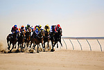 Outback horse racing at the annual Birdsville Cup Races, held every September in Birdsville, Queensland, Australia