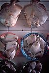 Fish Market, Malaysia, Kuching, Sarawak, Borneo, SE Asia,
