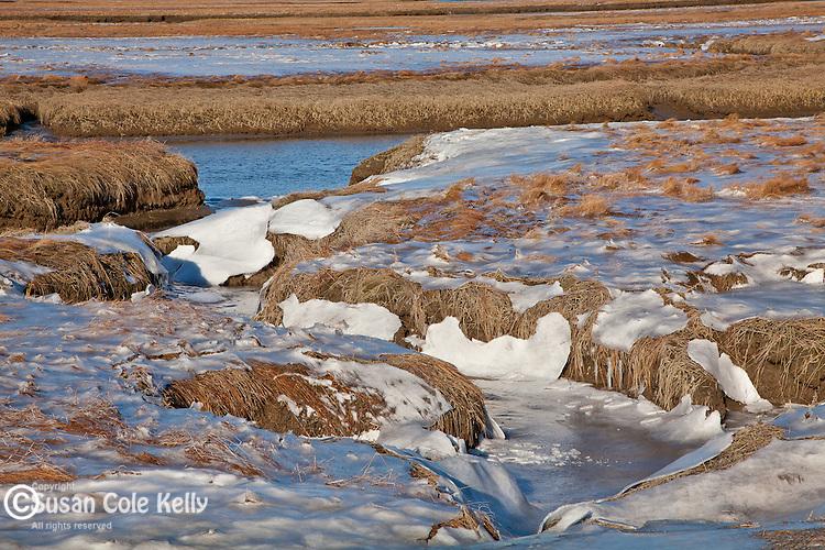 Frozen saltmarsh at the Rachel Carson National Wildlife Refuge in Wells, ME, USA