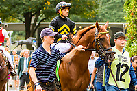 OCTOBER 7, 2018 : Fayette Warrior in the Futurity Stakes at Belmont Park on October 6, 2018 in Elmont, NY.  Sue Kawczynski/ESW/CSM