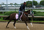 April 26, 2019 : Street Band works out  at Churchill Downs, Louisville, Kentucky, preparing for a start in the Kentucky Oaks. Owner J. Larry and Cindy Jones, Ray Francis, trainer J. Larry Jones. By Istan x Street Minstrel (Street Cry) Mary M. Meek/ESW/CSM