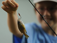 NWA Democrat-Gazette/ANDY SHUPE<br /> Nalah Villneff, 10, of Elkins admires a fish she caught Thursday, June 15, 2017, while fishing in Carter Pond during the annual Elkins Public Library Fishing Derby in Elkins. Prizes were awarded in several categories for children 16 and under before lunch was served.