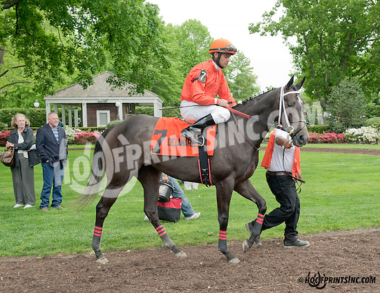 Doubled before The Our Mims Stakes at Delaware Park on 5/18/13
