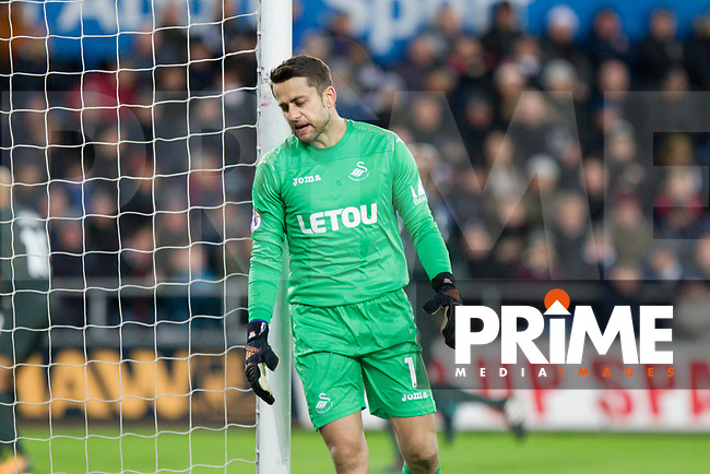 Lukasz Fabianski of Swansea City looks dejected after conceding his side's first goal during the EPL - Premier League match between Swansea City and Manchester City at the Liberty Stadium, Swansea, Wales on 13 December 2017. Photo by Mark  Hawkins / PRiME Media Images.
