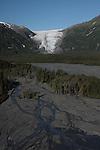 Seward Exit Glacier area