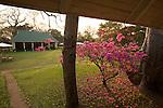 River Club lodge sur le Zambčze. Zambie