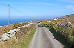 Road along west coast of Cape Clear Island, County Cork, Ireland, Irish Republic