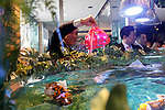 Japan's travel agency H.I.S. president Hideo Sawada releases a fish robot into the fish tank at the entrance lobby of the Henn-na (Weird) Hotel on March 15, 2017, Chiba, Japan. The hotel is managed by robots who can attend guest in English, Chinese and Japanese language. Every room has a concierge robot ''Tapia'' set to talk or make a request from guests such as turn on or off TV or provides weather forecast and news. Henn-na hotel opens its second branch in Chiba Prefecture, near to Tokyo Disney from March 15, which rooms cost start from 17,000 JPN per night. The first robot hotel opened in 2015 in Nagasaki. (Photo by Rodrigo Reyes Marin/AFLO)