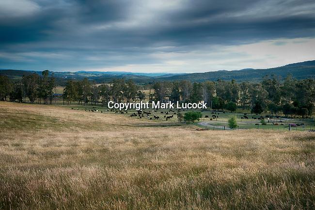 Fields, LaTrobe, Tasmania
