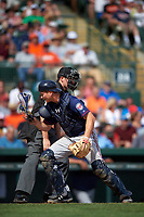 Minnesota Twins catcher John Hicks (66) looks for a pass ball as umpire John Tumpane looks on during a Spring Training game against the Baltimore Orioles on March 7, 2016 at Ed Smith Stadium in Sarasota, Florida.  Minnesota defeated Baltimore 3-0.  (Mike Janes/Four Seam Images)