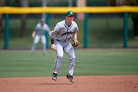 Dartmouth Big Green third baseman Steffen Torgersen (29) during a game against the USF Bulls on March 17, 2019 at USF Baseball Stadium in Tampa, Florida.  USF defeated Dartmouth 4-1.  (Mike Janes/Four Seam Images)
