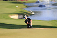 Jason Scrivener (AUS) chips onto the 18th green during Sunday's Final Round of the 2018 Turkish Airlines Open hosted by Regnum Carya Golf &amp; Spa Resort, Antalya, Turkey. 4th November 2018.<br /> Picture: Eoin Clarke | Golffile<br /> <br /> <br /> All photos usage must carry mandatory copyright credit (&copy; Golffile | Eoin Clarke)