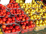 Selling agricultural produce at farmers market St. Jacob's Ontario
