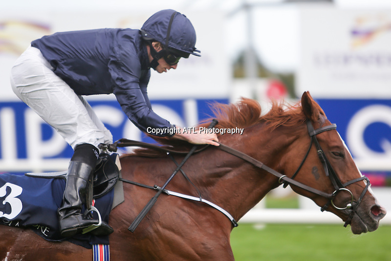 DUBLIN, IRELAND - SEPTEMBER 10: Alice Springs #3, ridden by Ryan Moore and trained by A P O'Brien, wins The Coolmore Fastnet Rock Matron Stakes on Champion Stakes Day at Leopardstown Race Course on September 10, 2016 in Dublin, Ireland. (Photo by Aindreas Lynch/Eclipse Sportswire/Getty Images)