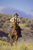Cowboy on horse running. Ponderosa Ranch, Seneca, OR. MR