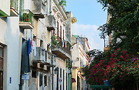 Cuba Havana Habana flowers and sunshine on buildings in Old Havana