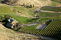 Atam Winery sits in the higher elevations of the Manson project and is known primarily for its German style wines.