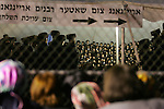 BROOKLYN - APRIL 29, 2006:  Members of Satmar community supporting Rabbi Aaron Teitelbaum attend services in a tent synagogue on a baseball field in a park at Taylor Street and Lee Avenue on Williamsburg on April 29, 2006 in Brooklyn. (Photograph Michael Nagle)